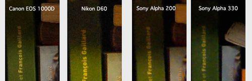 Sony-alpha-330-1600iso-nrdesa copie