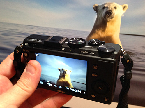 Nikon_coolpix_ab