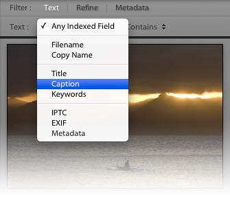 Text_field